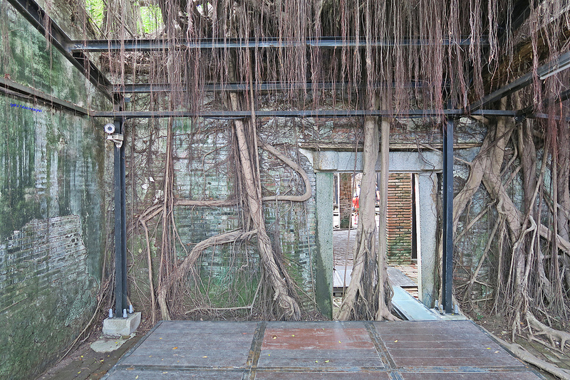 tainan台南一日遊-樹屋-綠色隧道-台江公園-17度環島隨拍 (14)