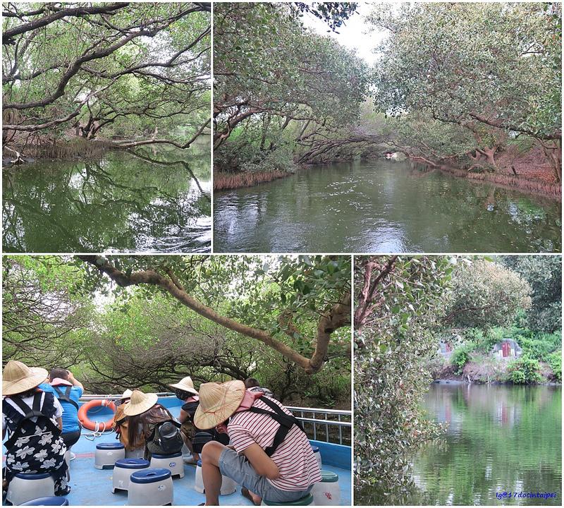 tainan台南一日遊-樹屋-綠色隧道-台江公園-17度環島隨拍 (31)