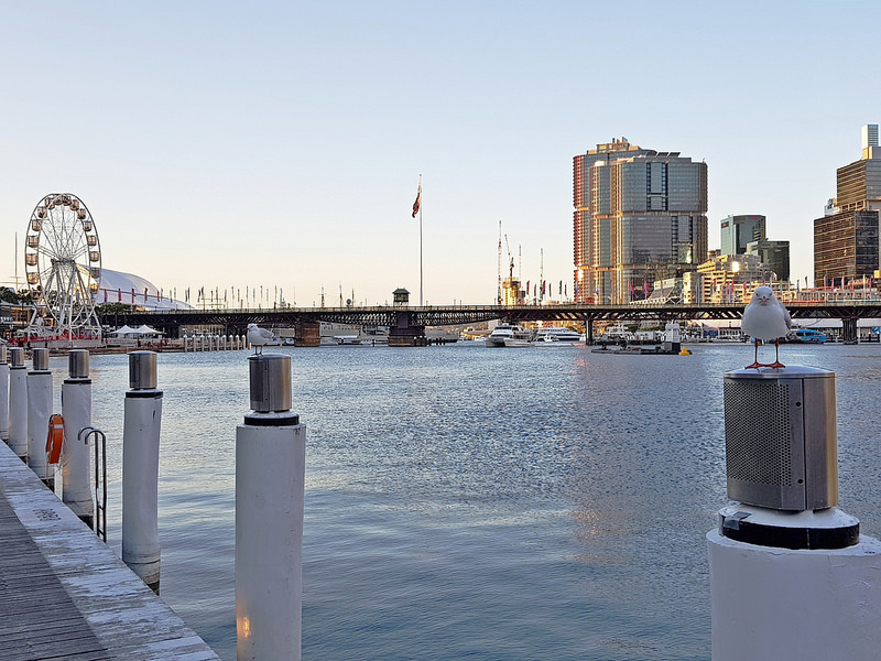 雪梨-景點-推薦-達令港-Sydney-DarlingHarbour-17docintaipei-travel-Australia (6)