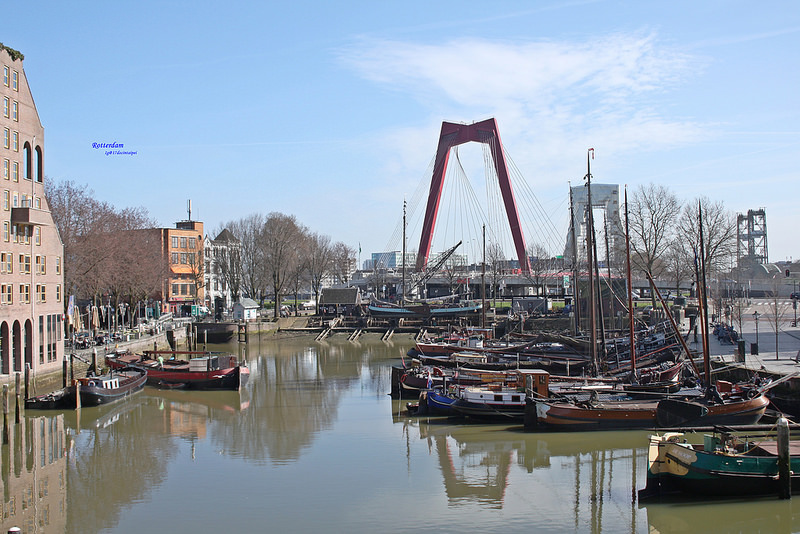 Travel-Rotterdam-Kubuswoningen-Cubichouses-17docintaipei (14)