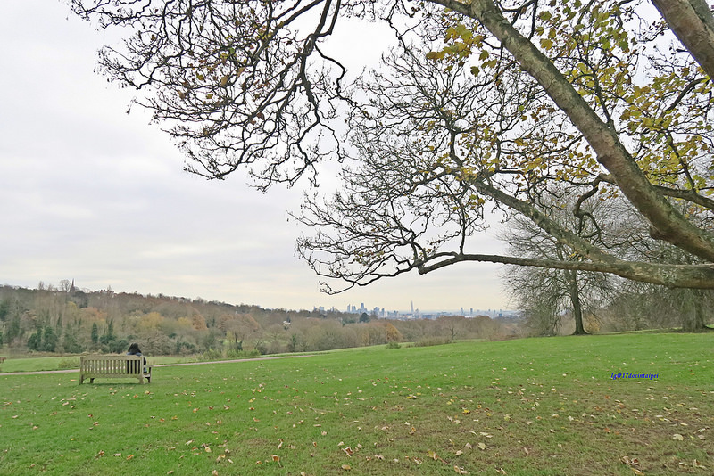 Kenwood-House-Hampstead-Heath-travel-london-BLOG-17docintaipei (13)