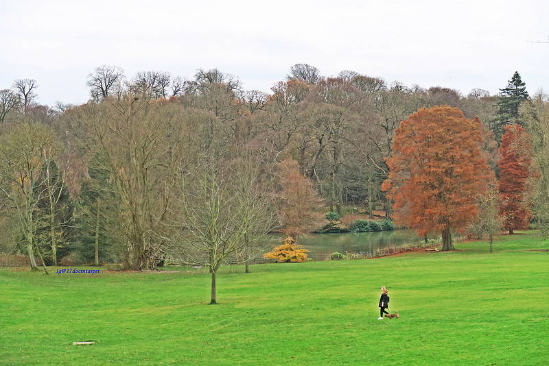Kenwood-House-Hampstead-Heath-travel-london-BLOG-17docintaipei (22)
