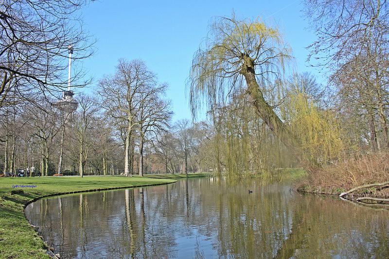 travel-Rotterdam-17docintaipei-歐洲自助旅行-荷蘭鹿特丹- (8)