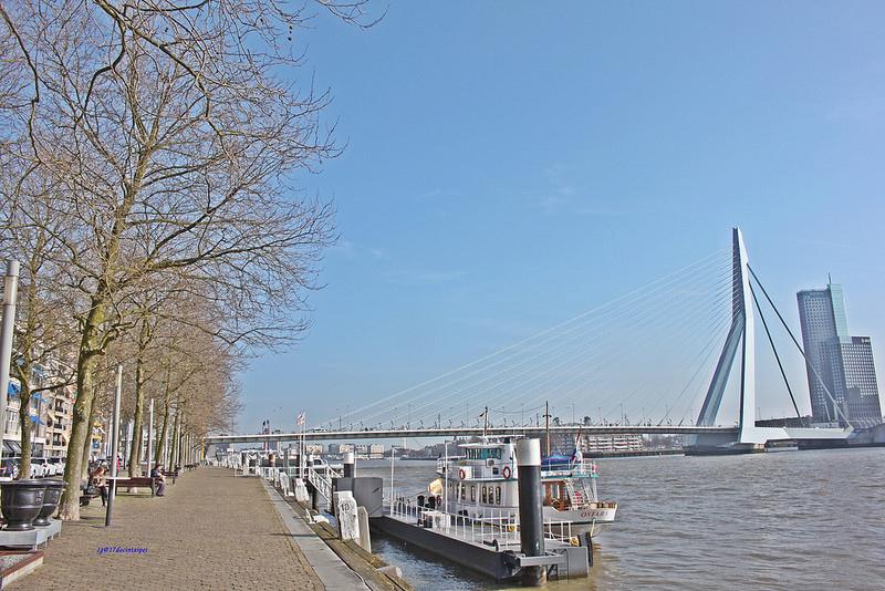 travel-Rotterdam-17docintaipei-歐洲自助旅行-荷蘭鹿特丹- (3)