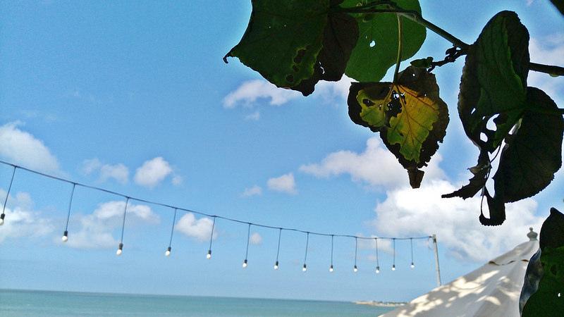 travel-taipei-北海岸-海景咖啡館餐廳-公雞咖啡-17度c隨拍 (25)