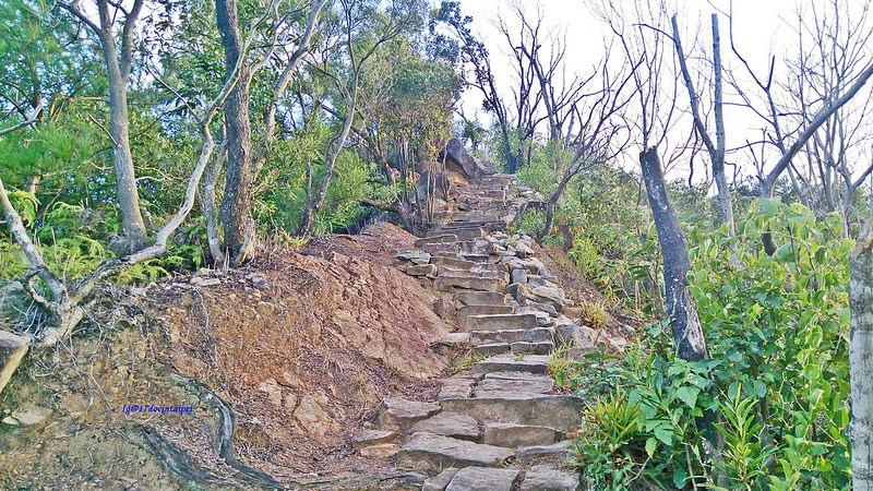 TAIPEI-bush walking-台北郊山健行-內湖金面山剪刀石-17度C隨拍 (10)
