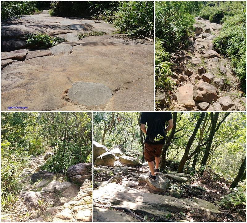 TAIPEI-bush walking-台北郊山健行-內湖金面山剪刀石-17度C隨拍 (33)