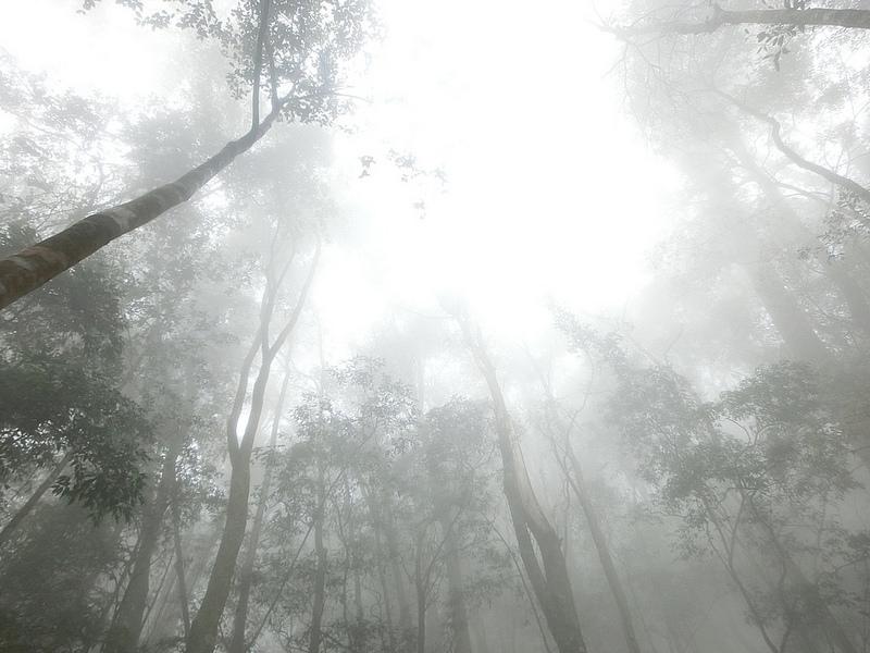 環島景點-鳶嘴山-17docintaipei-traveltaiwan (20)