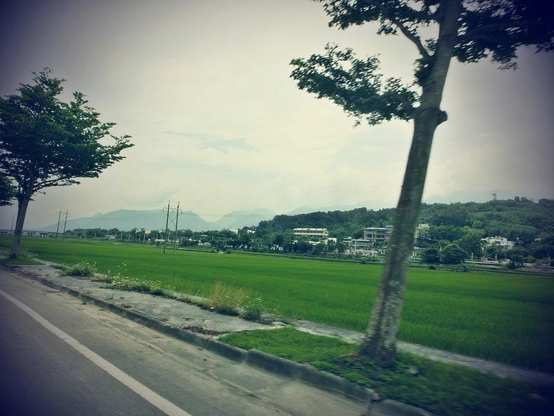 TaiwanIsland trips-Couchsurfing-17docintaipei (32)