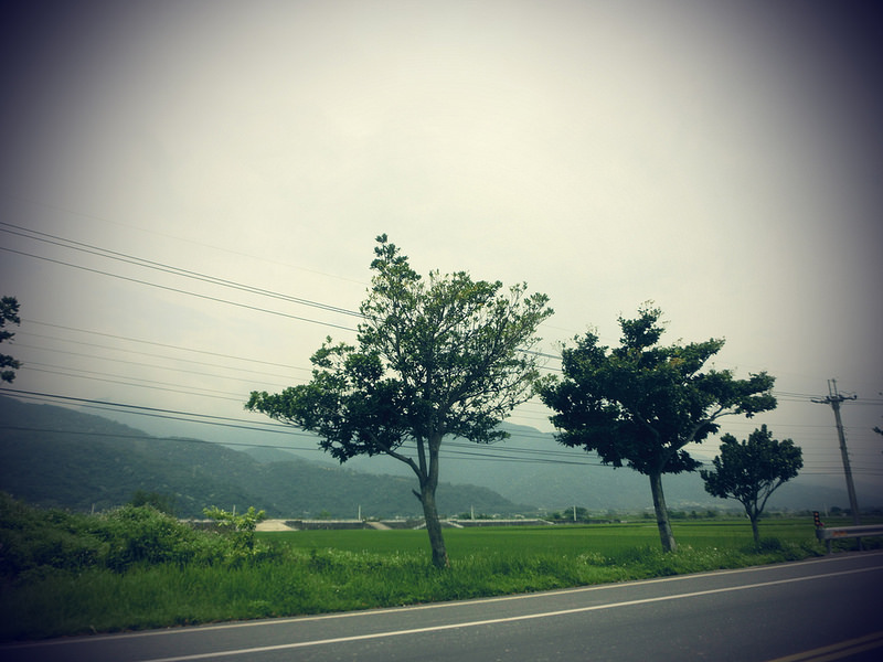 TaiwanIsland trips-Couchsurfing-17docintaipei (35)