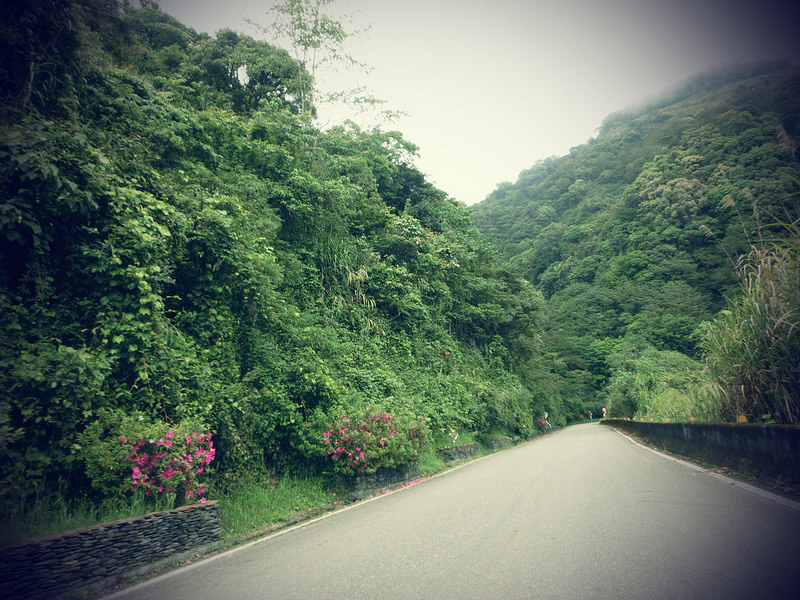 TaiwanIsland trips-Couchsurfing-TAIWAN-秘境-栗松溫泉-17度C隨拍 (30)