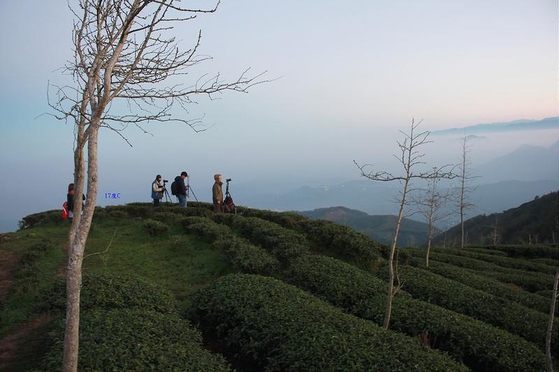 南投武岫農圃 X 日出-17度C隨拍 (6)