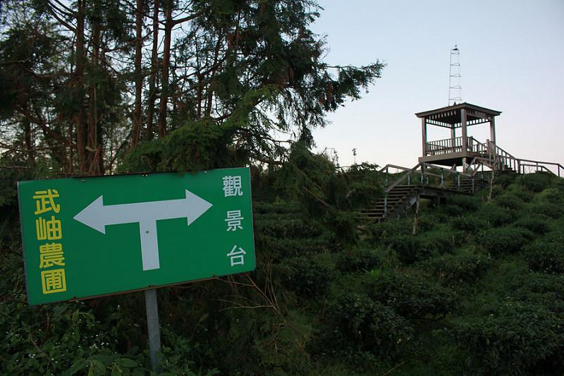 南投武岫農圃 X 日出-17度C隨拍 (17)