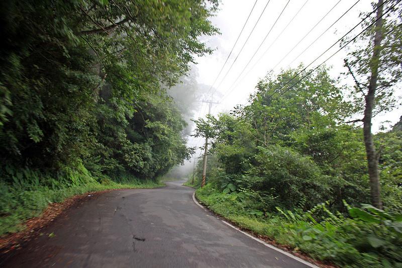 環島。前網上地部落道路-竹60-司馬庫斯產業道路 (23)