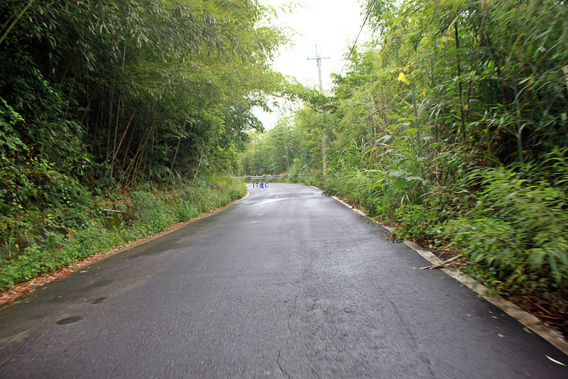 環島。前網上地部落道路-竹60-司馬庫斯產業道路 (36)