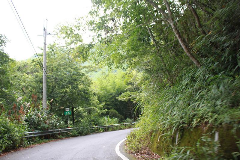 環島。前網上地部落道路-竹60-司馬庫斯產業道路 (99)