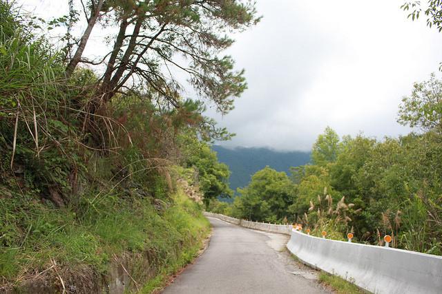 環島。前網上地部落道路-竹60-司馬庫斯產業道路 (91)