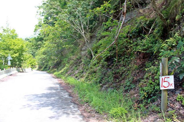 環島。前網上地部落道路-竹60-司馬庫斯產業道路 (61)