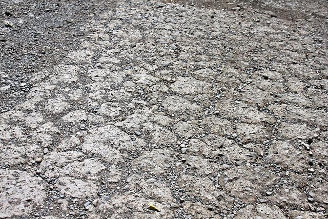 環島。前網上地部落道路-竹60-司馬庫斯產業道路 (69)