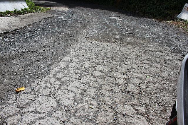 環島。前網上地部落道路-竹60-司馬庫斯產業道路 (68)