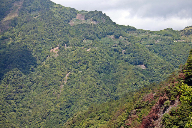 環島。前網上地部落道路-竹60-司馬庫斯產業道路 (74)