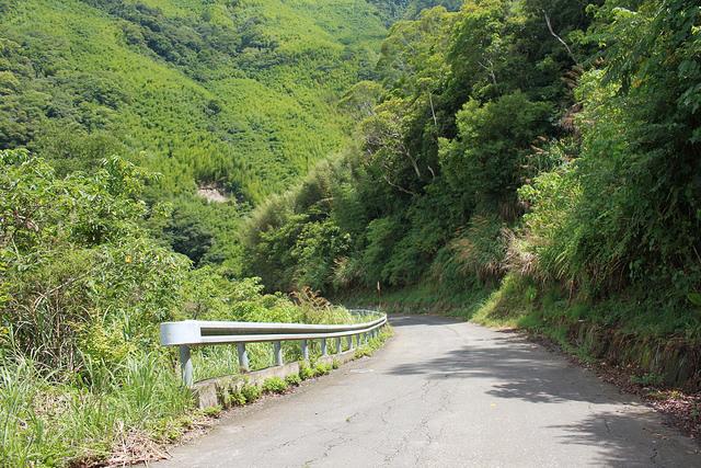 環島。前網上地部落道路-竹60-司馬庫斯產業道路 (83)
