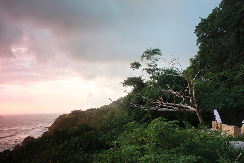 環島-西子灣-夕陽與猴子共舞 (25)