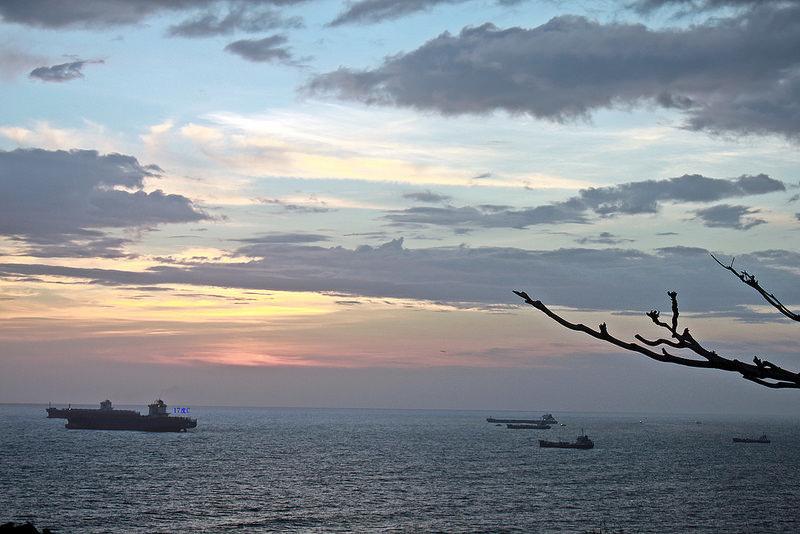 環島-西子灣-夕陽與猴子共舞 (42)