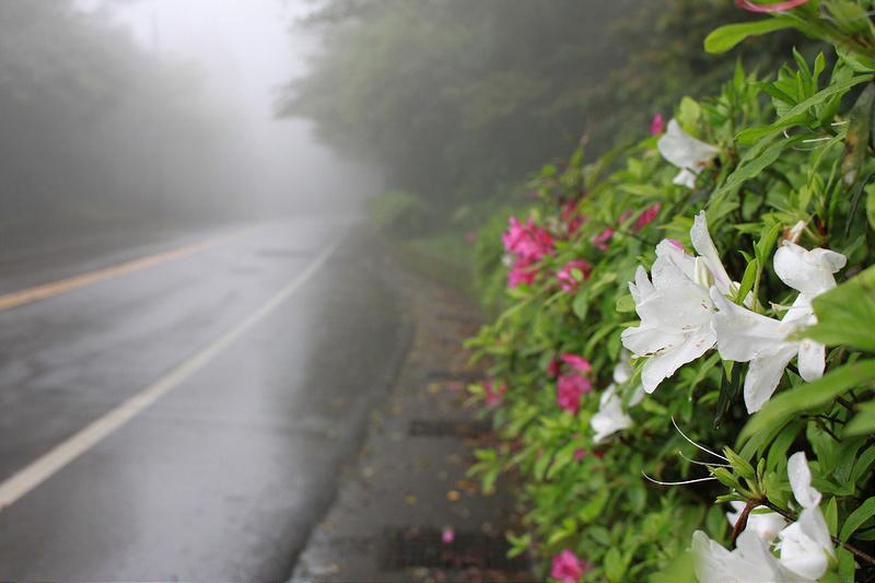 台北宜蘭-雲海公路。台灣美麗公路-17度C隨拍 (7)