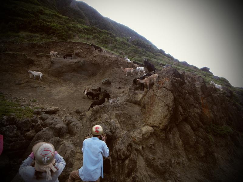 蘭嶼快速導覽-2014環島 (186)