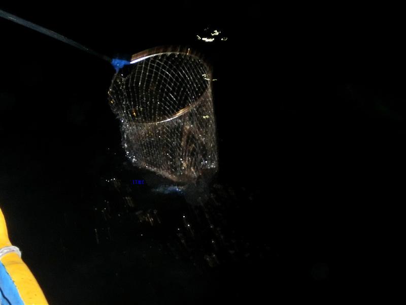 17度C環島-蘭嶼飛魚季體驗- (13)