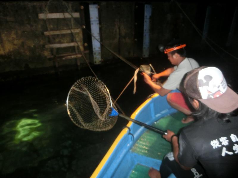 17度C環島-蘭嶼飛魚季體驗- (33)