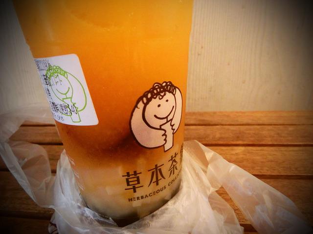 2014- 台灣TAIWMAN環島嘉義 (20)