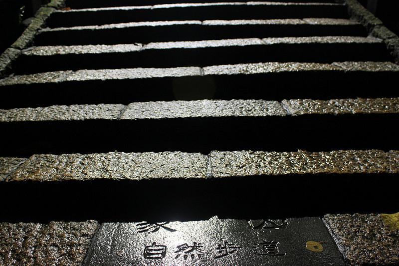 。文。台北。旅行。跨年煙火
