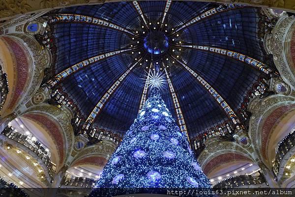拉法葉聖誕樹