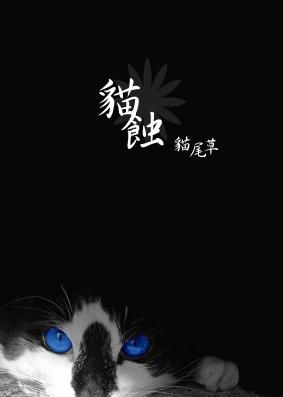 貓尾草.jpg