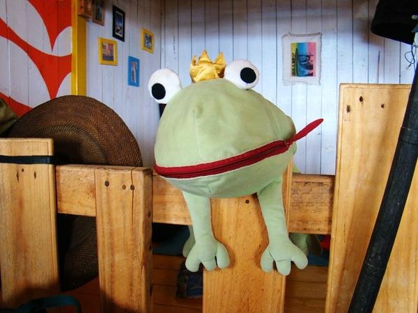 島上最大型的青蛙.jpg