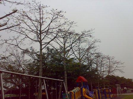201004112608.jpg