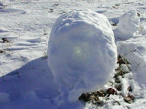 雪卷1.jpg