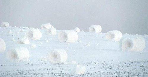 雪卷3.jpg
