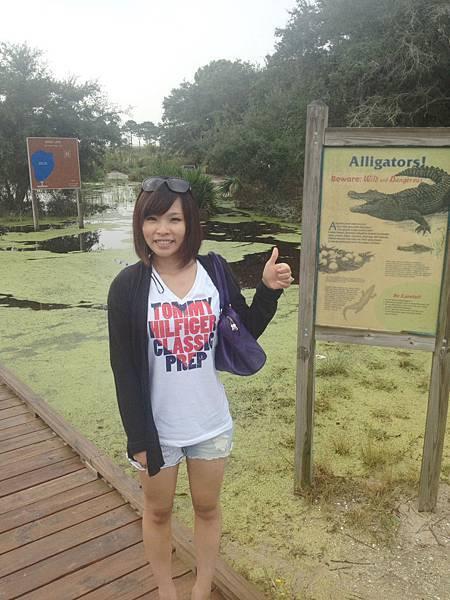 鱷魚池拍照讓我膽顫心驚