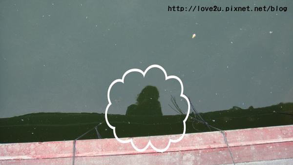 林小喵的自拍照