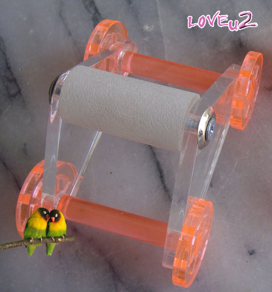 鸚鵡玩具.溜冰鞋的獨照