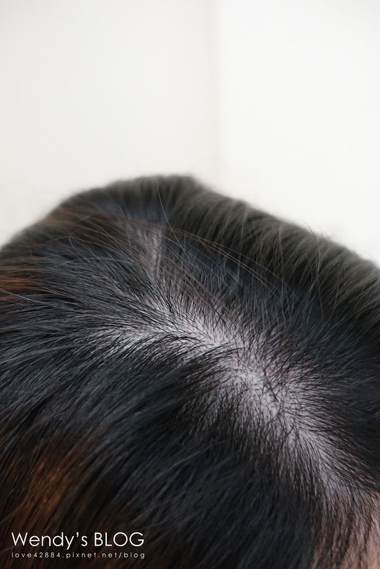 飛柔淨油柔順微米淨透洗髮露+潤髮乳