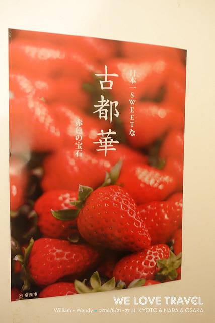20170325~0403_京都奈良大阪3
