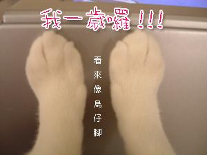 1143094746_3.jpg