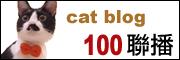 catblog.jpg