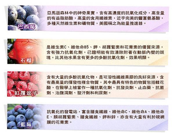 網站廣告設計★保健果汁(2)