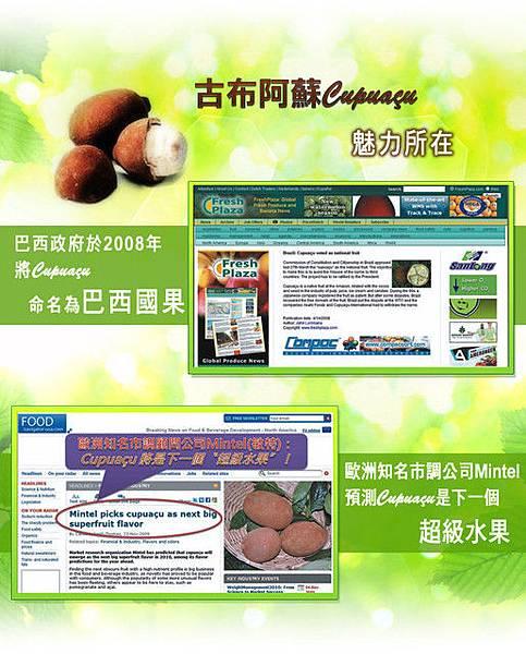 網站廣告設計★保健果汁(3)