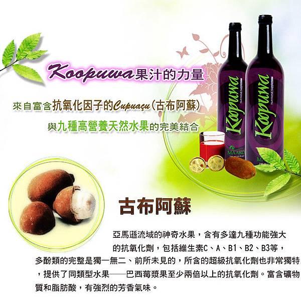 網站廣告設計★保健果汁(1)